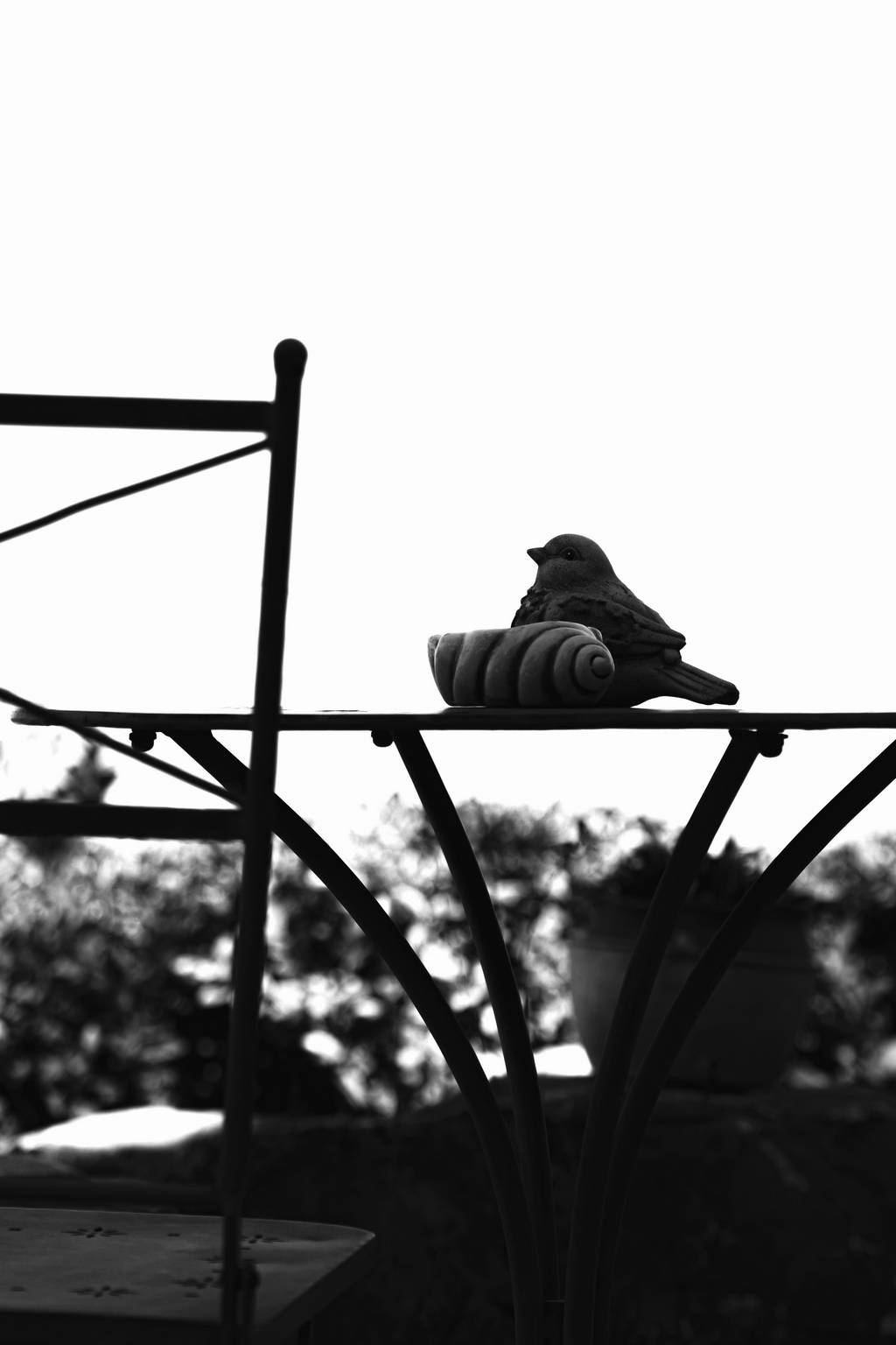 Bird_B&W_DSC0046.jpg